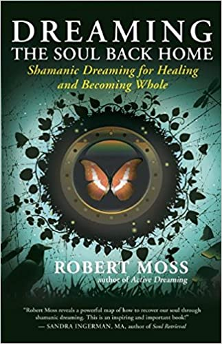 Book Cover Dreaming the Soul Back Home by Robert Moss